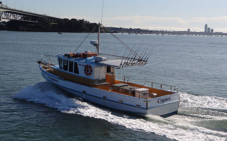 Auckland fishing charter boats cygnet ii and reef runner for Fishing charters auckland